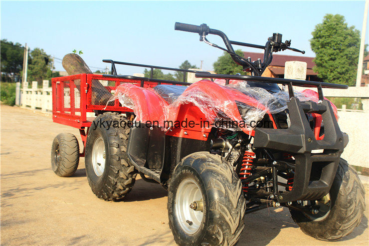 125cc Mini, Electric ATV for Farm Sporting