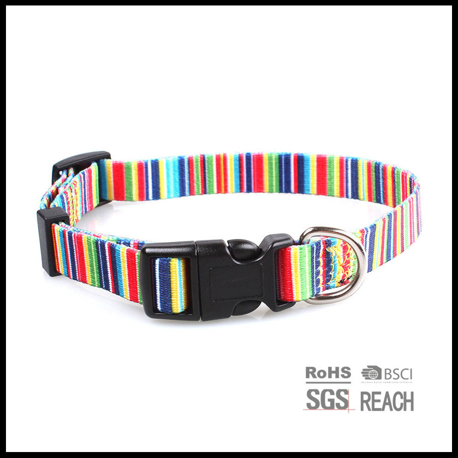 Best Rainbow Print Dog Collar Design Sublimated Pet Cat Collar Dog Products