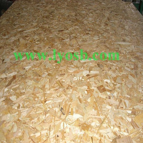 Oriented Strand Board : China oriented strand board osb