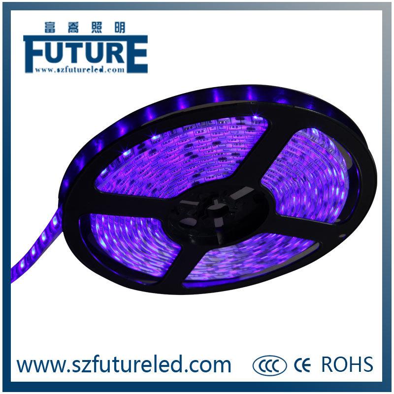 Plastic & Polymer 12V RGB Flexible LED Light Strip with 5m/Roll