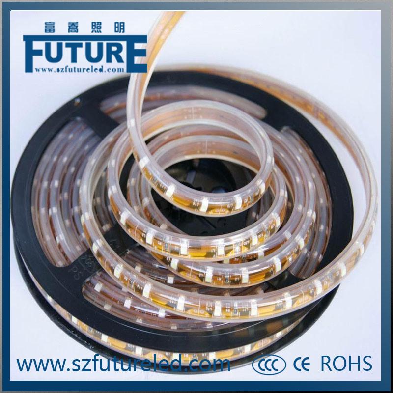 AC220V 2835SMD LED Decorative Lights LED Rope Light