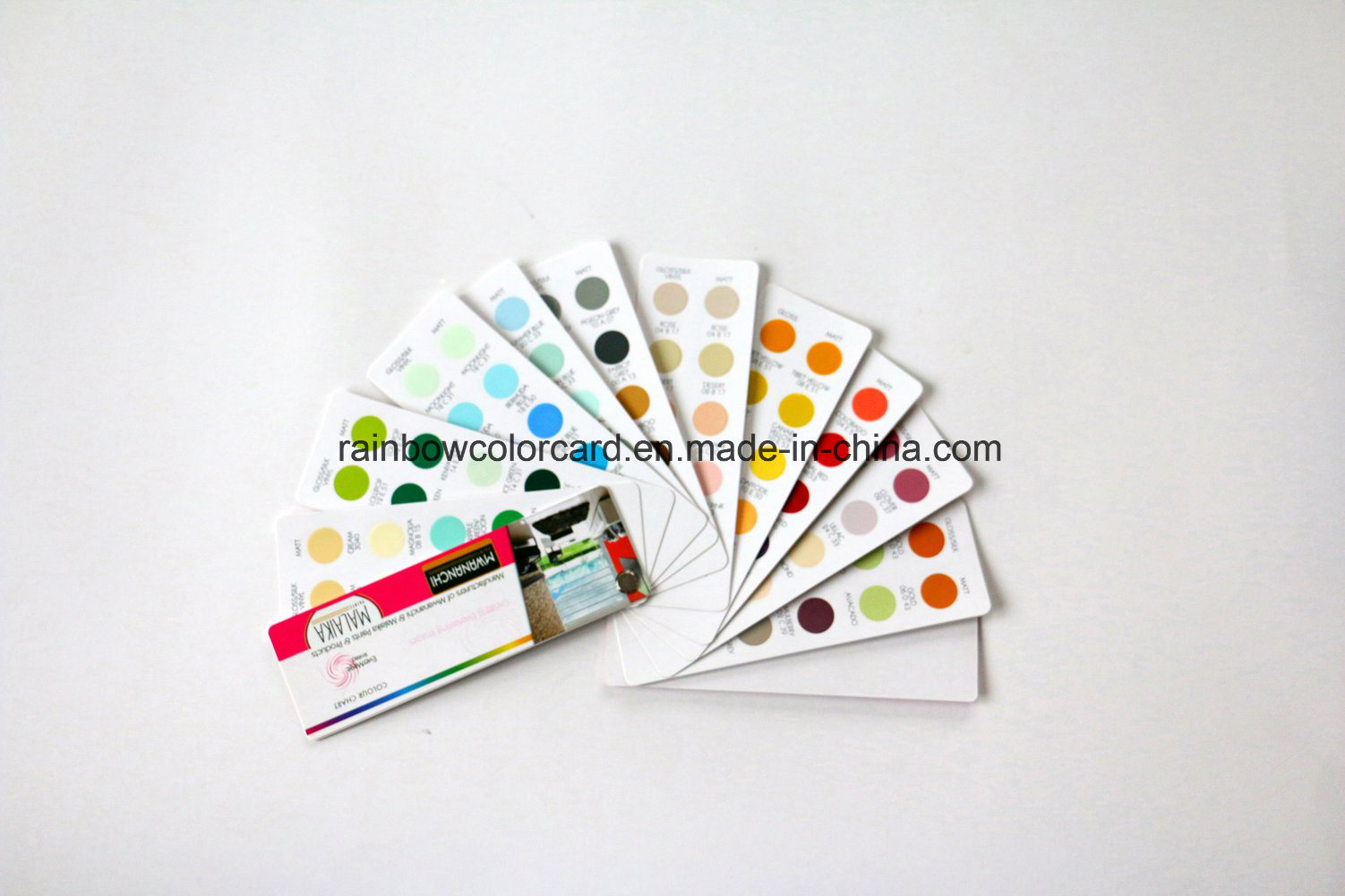 Professional Standard Wall Paint Fandeck in Circle Shape