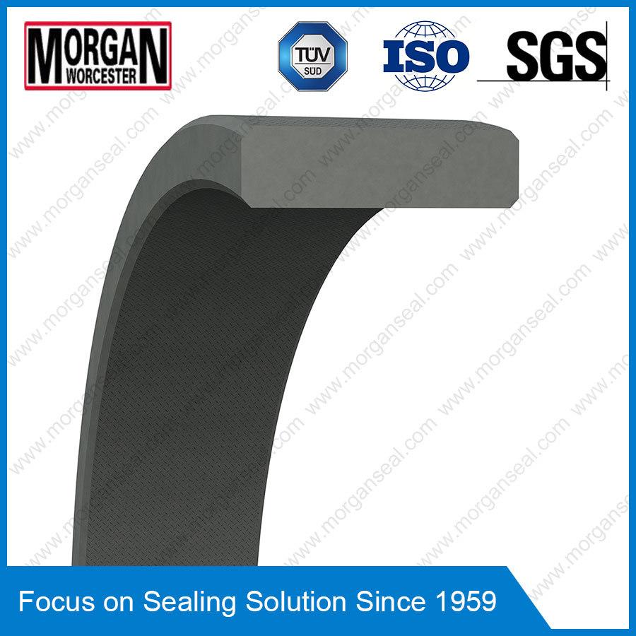 Fra/Gp Profile PTFE/Teflon Piston Guide Ring Seal/Wear Ring