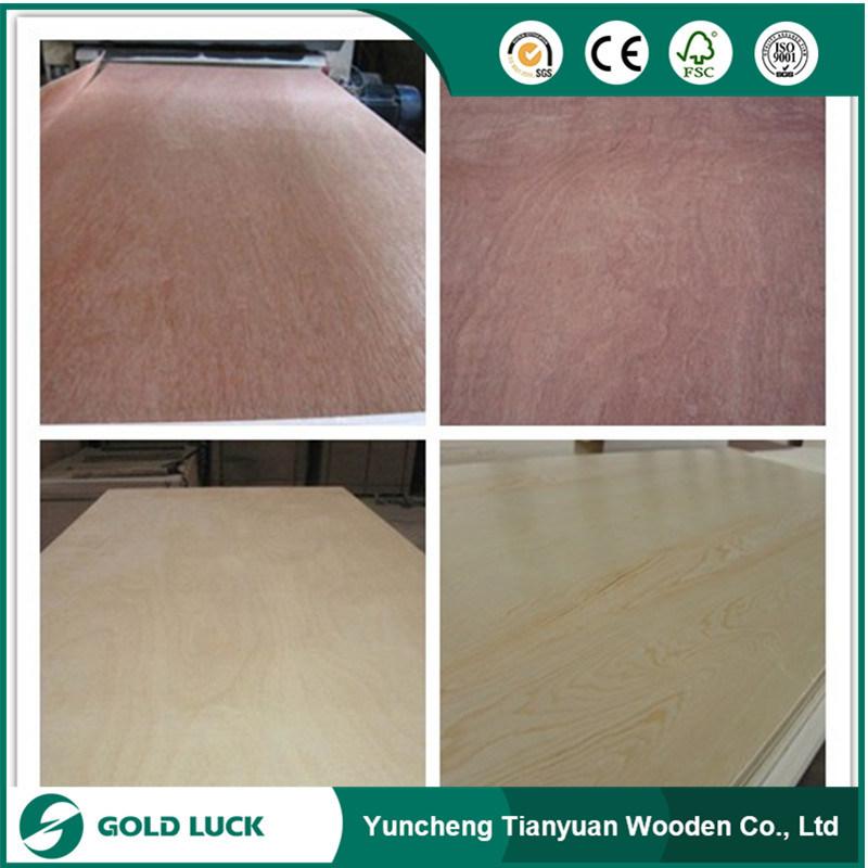 12mm Bintangor Commercial Plywood
