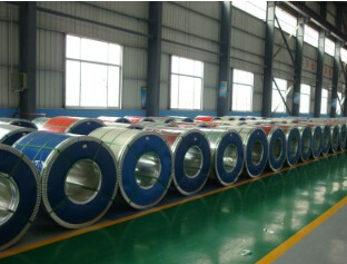 High Quality Pre-Painted Galvanized Coil Made in China