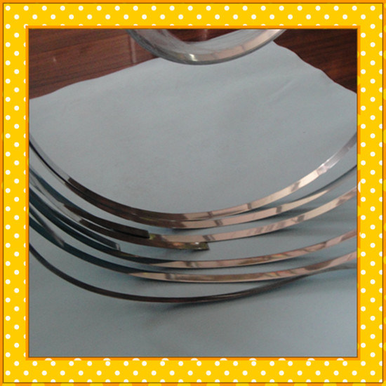 Stainless Steel Narrow Strip