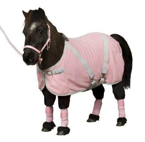 Pretty Pony Rugs Rugats