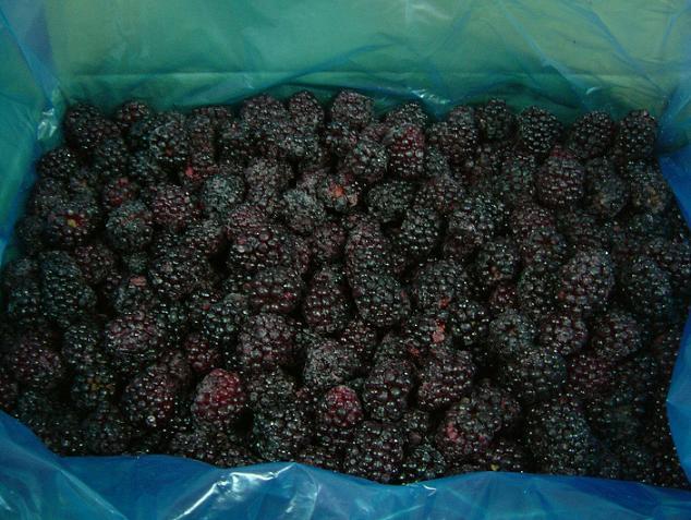Frozen Blackberry (NK)