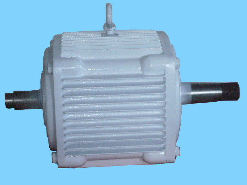 1kw Double Shaft Wind Generator/Alternator