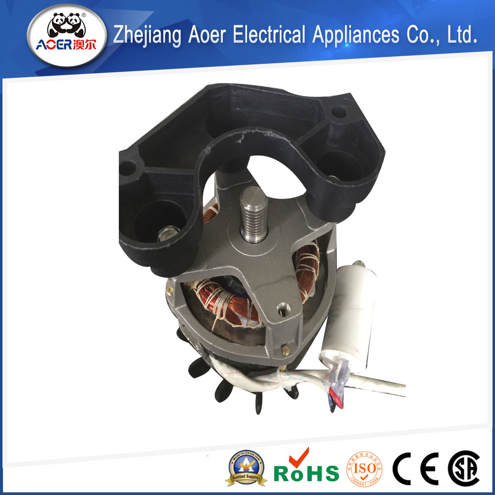 1000 Watt Single Phase Induction Capacitor Blender Motor