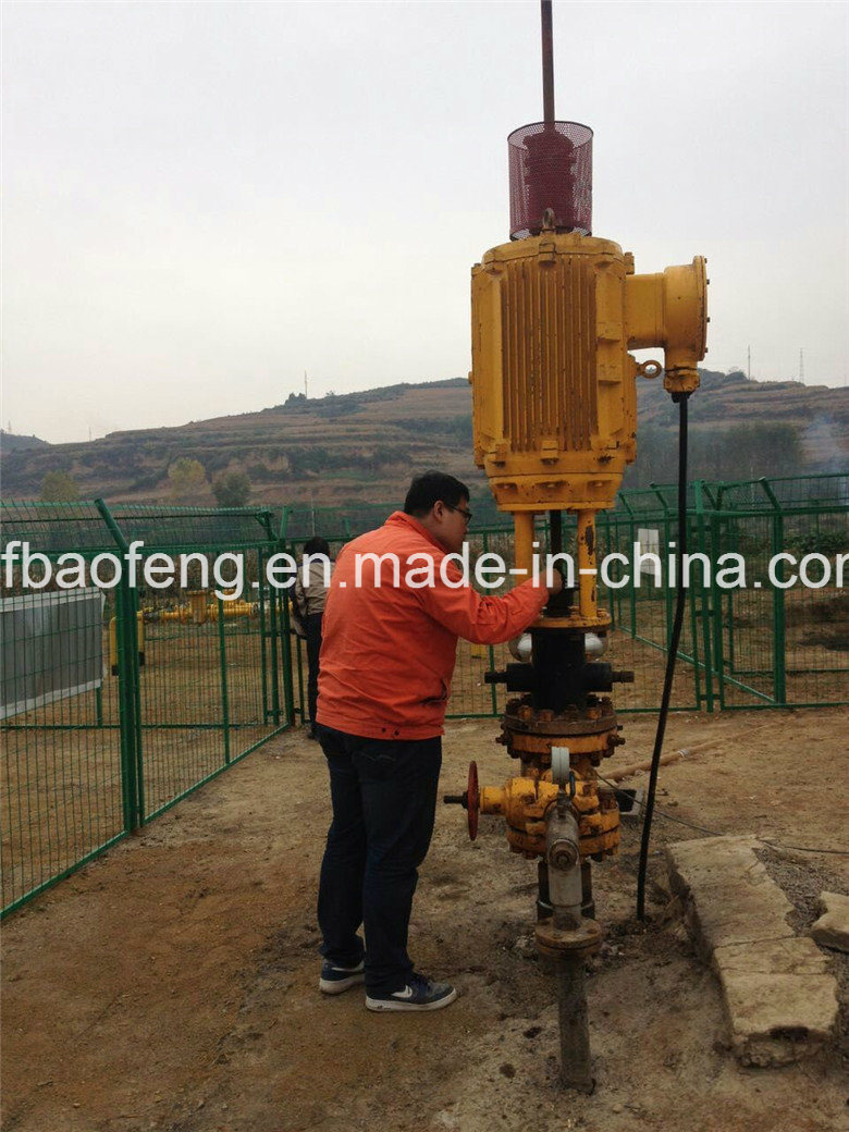 """Oillift 7"""" Casing Coalbed Methane Screw Oil Pump/Pcp Pump with 6 5/8"""" Anchor"""