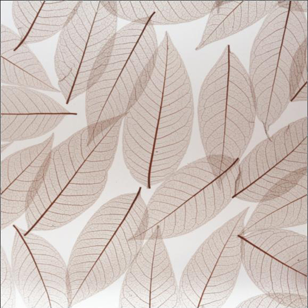 China New Generation Decorative Acrylic Sheet (g0907b