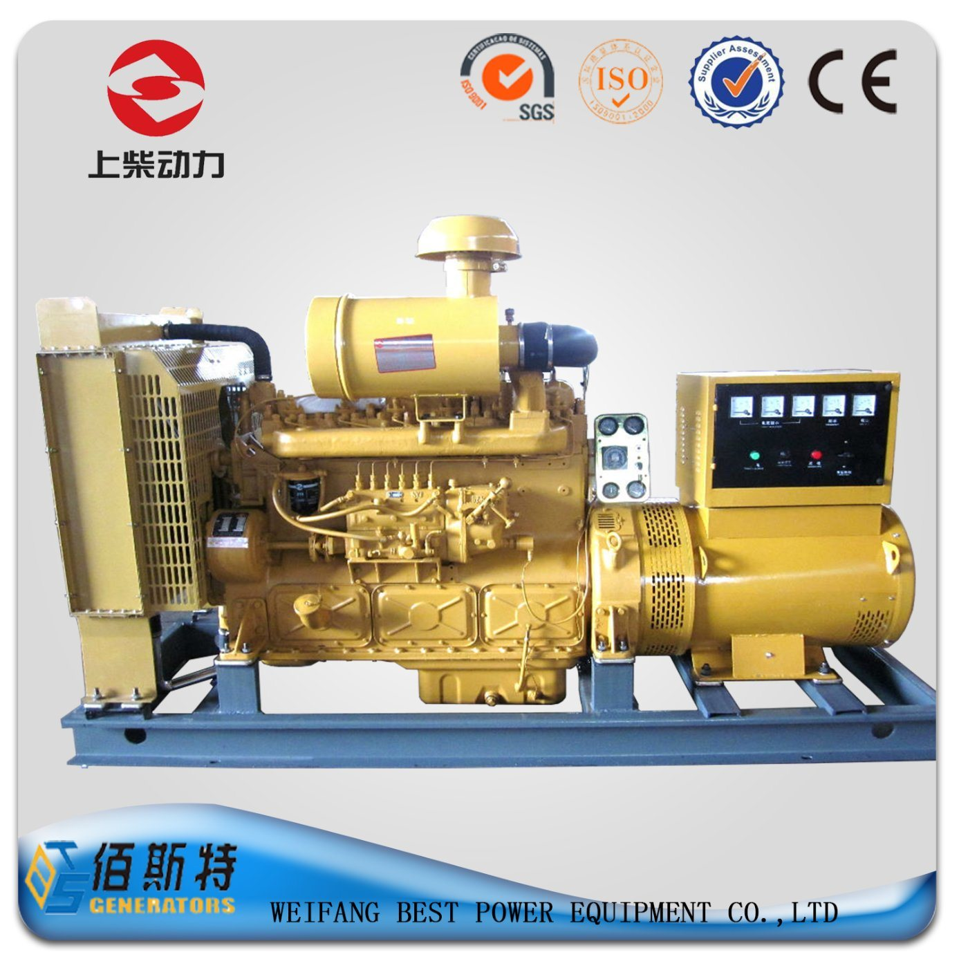 China 250kw Shangchai Engine Industrial Genset for Sale S1