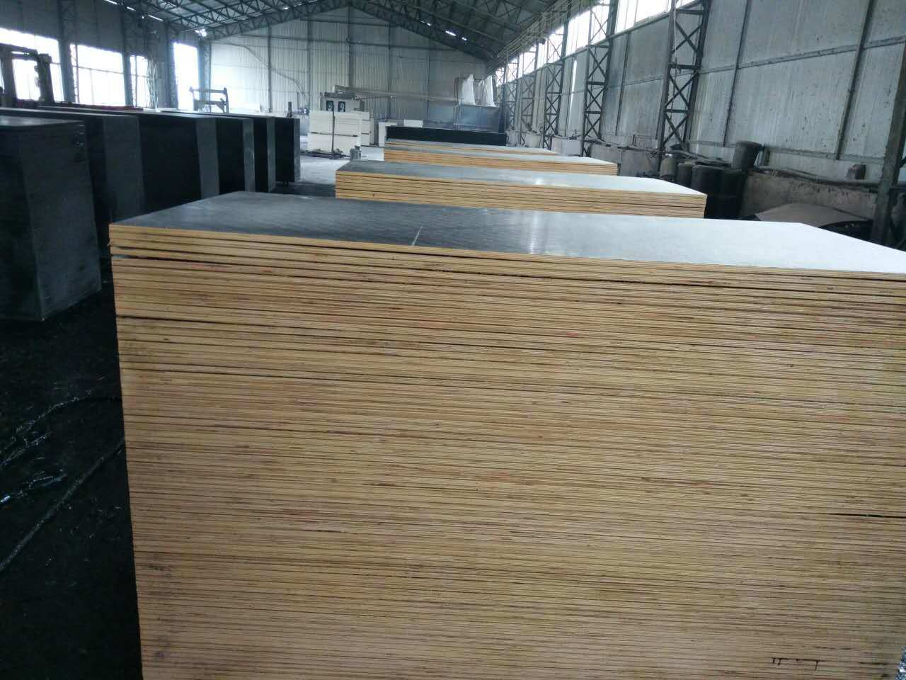 Colorful Film Faced Plywood for Construction and Building
