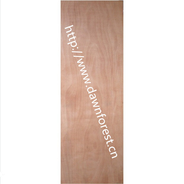 Cheap Wooden Plywood Door in China