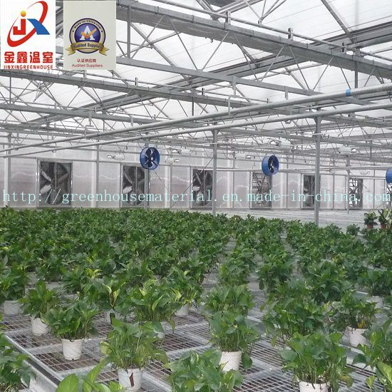 Modernization Intelligent Green House with Multi-Function