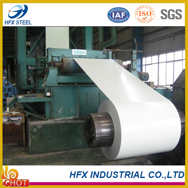 PPGI Steel Coil for Roof Sheet