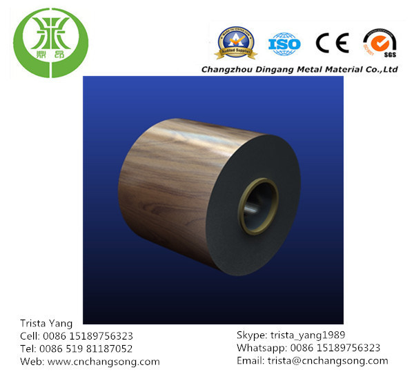 Prepainted Galvanized Steel Coil/Sheet (PPGI, PPGL)