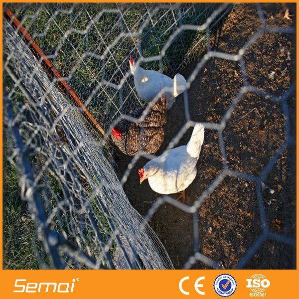 High Quality Hot Sale Galvanized Hexagonal Chicken Wire Mesh