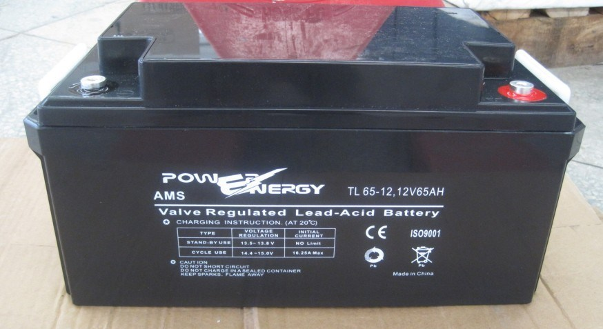 Tl12-65 12V65ah Valve Regulated Lead Acid Maintenance Free UPS Battery