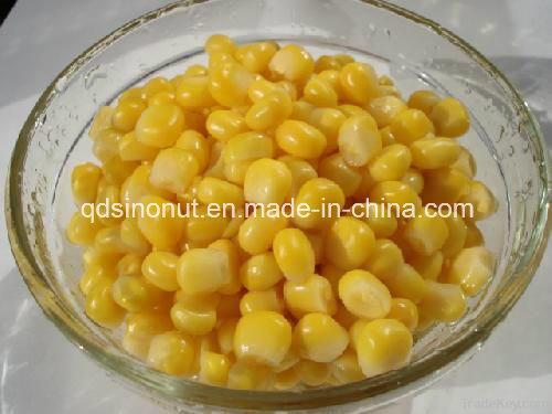 Good Quality Canned Sweet Corn Kernels