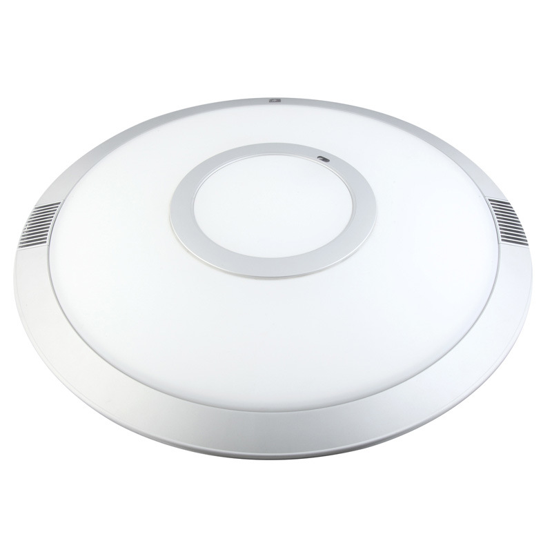 LED Ceiling Light 24W