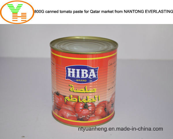 Canned Tomato Paste Manufacturer Healthy Canned Food OEM