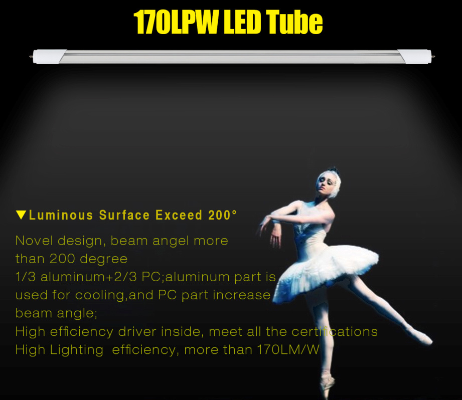 New Design Uniform Light 170lm/W LED T8 Tube 600 with UL Dlc Ce RoHS
