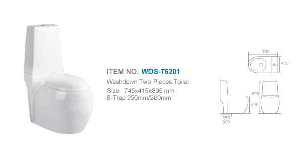 Weidansi Ceramic Wash Down S-Trap Two Pieces Toilet (WDS-T6201)