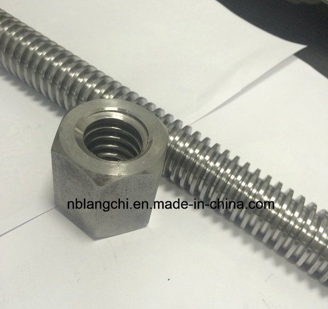 Trapezoidal Thread Acme Rod Lead Screw with Hex Nuts Tr30X6