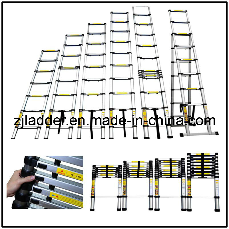 Aluminum Telescopic Ladder (ZJS-2.9D)