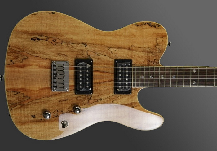 Fender Spalted Maple Tele Custom Tele Spalted Maple hh