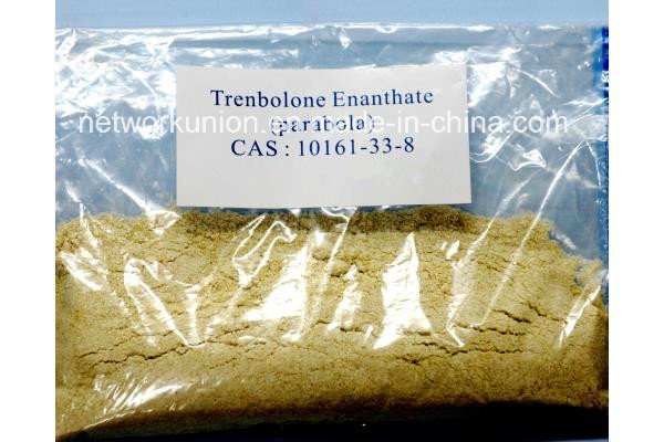 No Side Effect Injectable Anabolic Steroid Trenbolone Enanthate Powder CAS 10161-33-8
