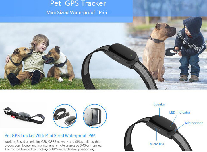 2016 New Real Time Map Location Pet GPS Tracker (EV-200)