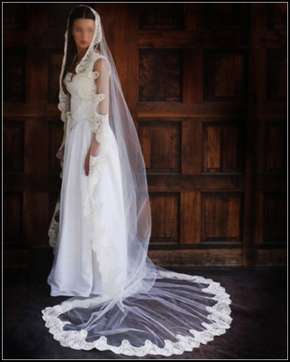 China Bridal Veils With Long Tulle Xnts11003