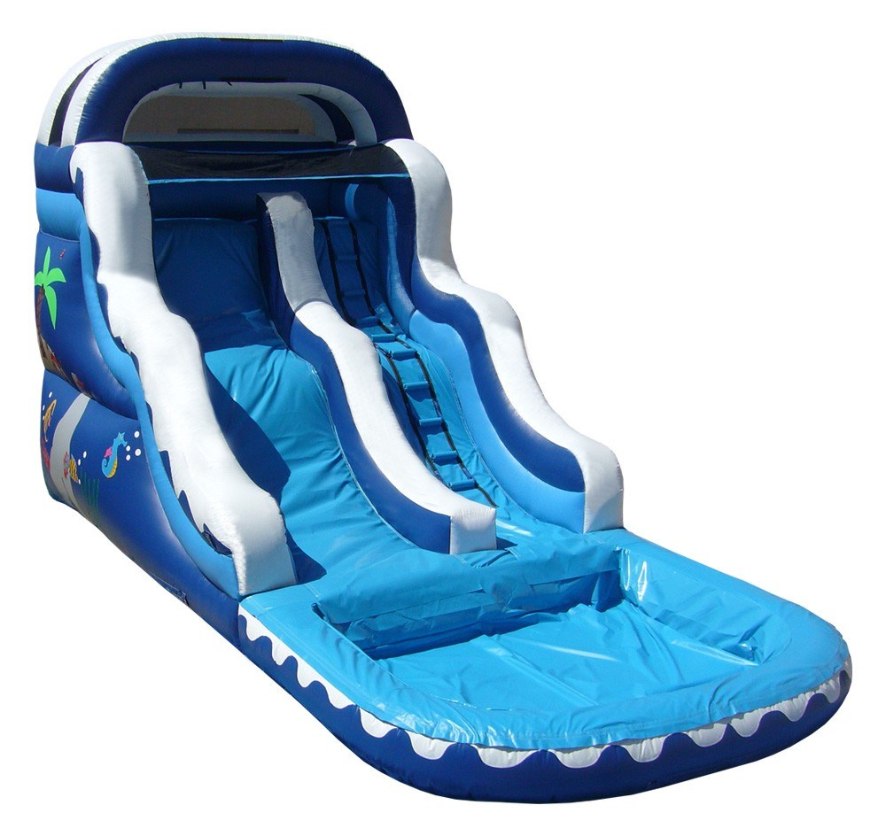 Inflatable Water Slide China: China Inflatable Water Slide (C14)