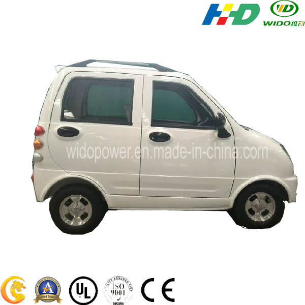 Elf Electric Car/Battery Car/E-Car