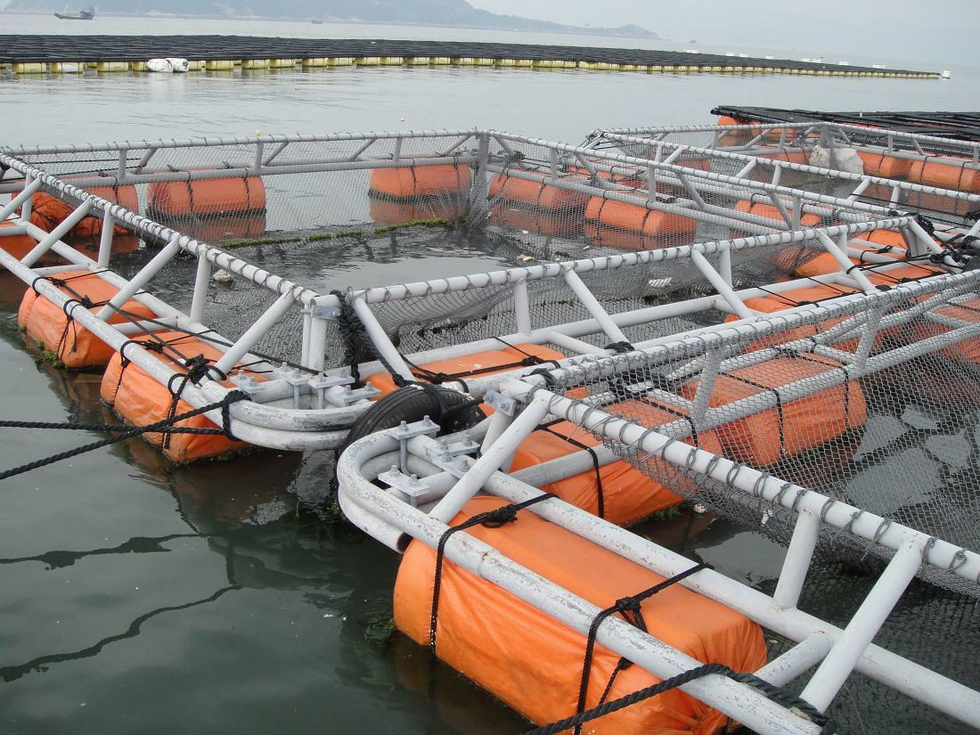 The Full-Metal Anti-Flow Cage with Full Automatic Layer Cage
