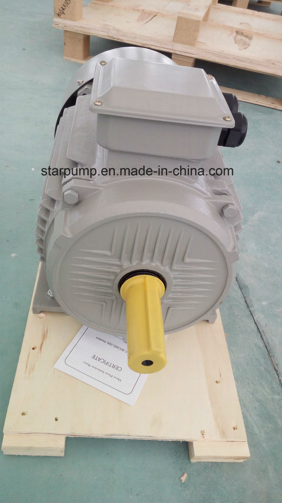 Y2 Iron Casting Three Phase Electric Motor -Standard Motor