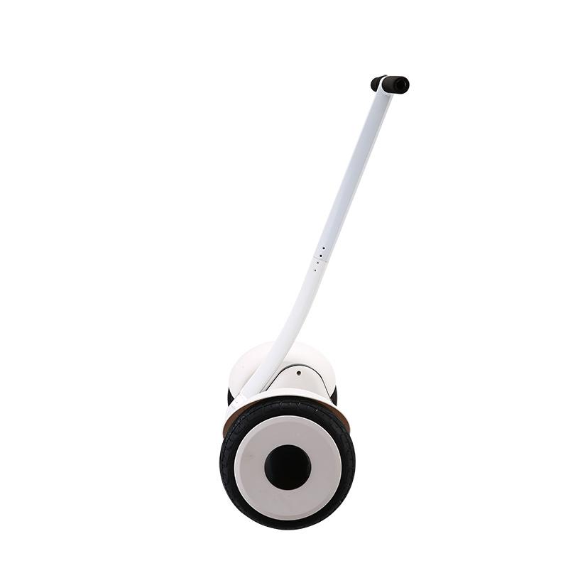 Minirobert Electric Scooter Fashion Sports Skateborad Self Balance Scooter