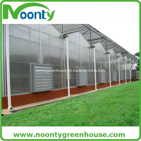 Polycarbonate Greenhouse, Glass Greenhouse