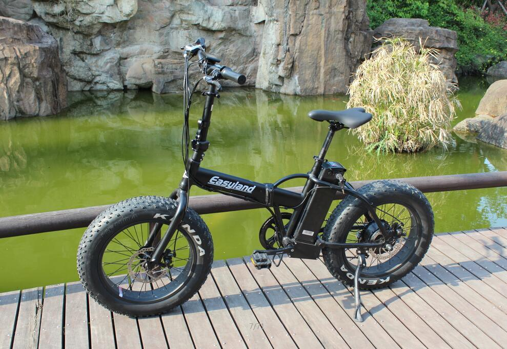 20 Inch Electric Folding Bike with Lithium Battery 250W/500W