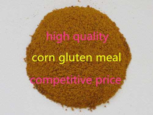 Corn Gluten Meal for Animal Feed High Quality