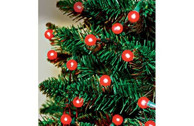 China 120 Low Voltage Red Berry / Christmas Lights