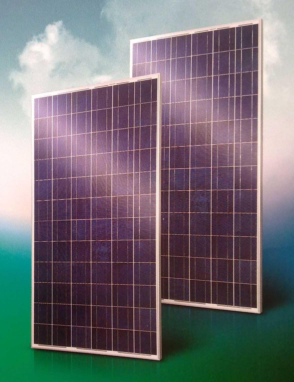 Solar PV Module (BLD-72-6P)
