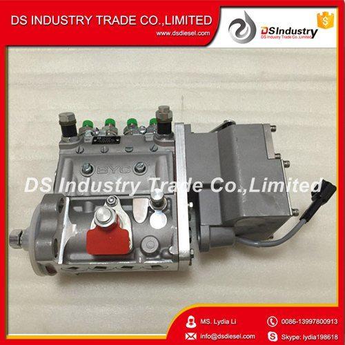 Qsb4.5 4bt3.9 Fuel Injection Pump for Cummins 5262669