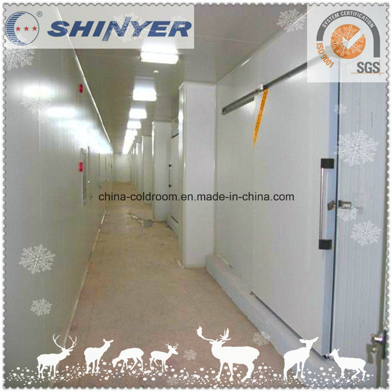 Combined Cold Storage Room for Food Storage