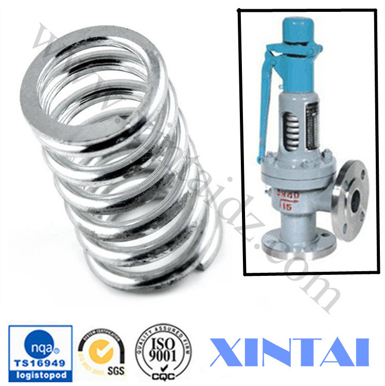 Customized Various Types Metal Compression Springs