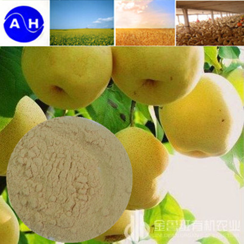 Enzymatic Hydrolysis Amino Acids for Organic Agriculture