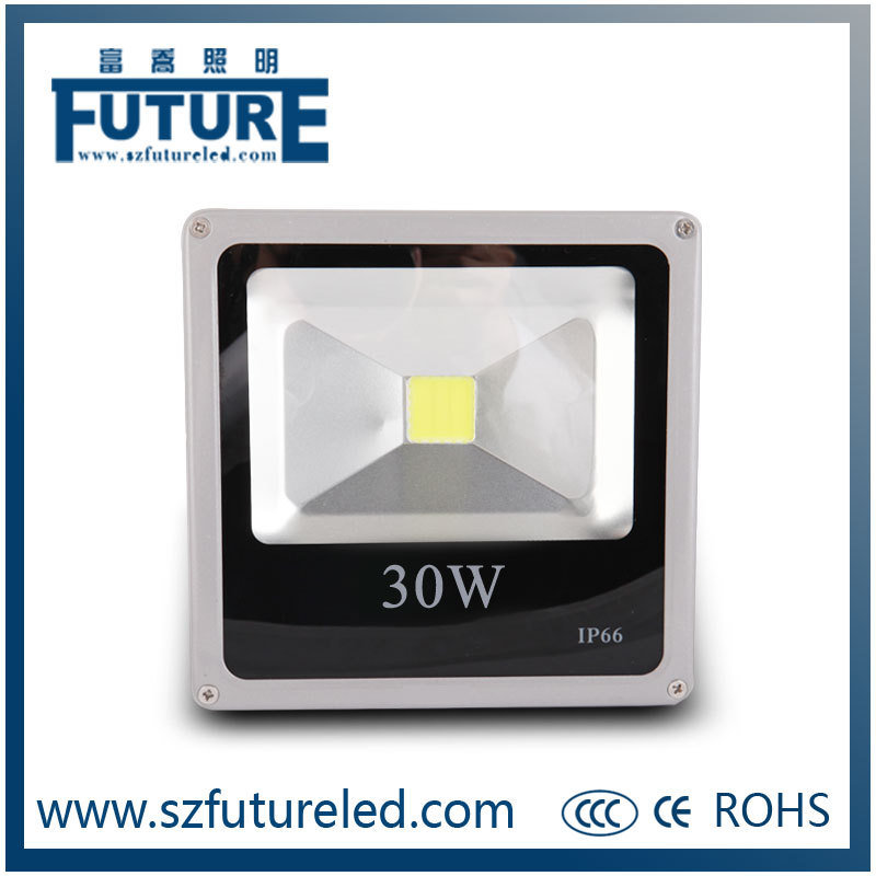 CE RoHS Approval Shenzhen Future New 30W LED Flood Light